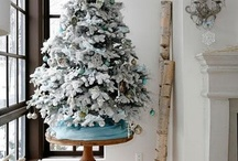 Christmas/Winter Decor / by Carrie Jerrell