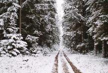 W I N T E R / SNOW || COLD || FIR || LIGHTS || BLANKETS