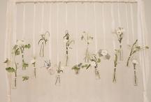 ♡ Flores ♡