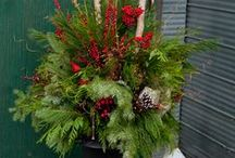 Christmas  / by Marcia Carkoski