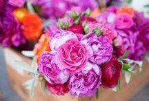 floral / by Sierra Elliott