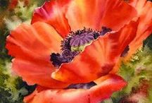 ART: Watercolours-florals -poppies