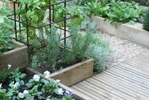 """Gardening / All that is very well,"""" answered Candide, """"but let us cultivate our garden."""""""