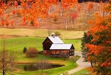 Farming / Red Barns