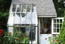 GREENHOUSE / We love to plant a garden and  we are working on landscaping the whole side  of the house. The flowers are a must for us the beauty of them I want to start a mini greenhouse / by Marty Cupp