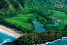 When in Hawaii / #hawaii / by Terri Bruell