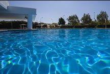 Jardines y piscina del Hotel Barceló Sevilla Renacimiento / El hotel dispone de excepcionales instalaciones con restaurantes, sala de ordenadores con Wi-Fi gratuito, piscina exterior (abierta en temporada), sala de fitness, aparcamiento y centro de negocios.