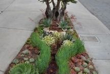 Landscaping with curb appeal / #Landscaping ideas that add #curbappeal (and value!) to your house