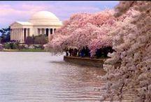 Washington, D.C. / by Kara Tershel