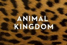 ANIMAL KINGDOM / Puppies! Kittens! Plus, pet accessories and fierce looks for those that walk on the wild side.