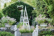 Vegetable garden layout ideas / by Overthrow Martha