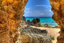 Bermuda / by Alyx Mance