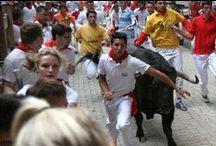 San Fermin de Pamplona Bullrun