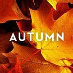 AUTUMN / Changing colors. Cooler weather. And warmer layers. Cue the fashion that makes fall our favorite season.