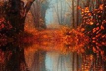 Beautiful Scenery / Pictures that make you say: Ah....beautiful!