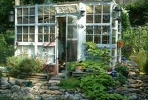 Recycled greenhouses  / by Karla Nathan