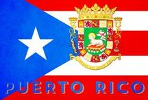Puerto Rico Spanish / Puerto Rican Spanish Words | Puerto Rican Spanish Phrases | Options for a Puerto Rican Spanish Dictionary | Puerto Rican Spanish Accent | Puerto Rican Spanish Insults | Puerto Rican Culture | Boricua