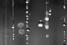 Photography - Drips and Droplets / Drips and droplets and morning dew . . . So beautiful :o)