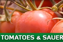 Eden Tomatoes/Sauerkraut / We welcome you to shop, or simply browse and learn. Every Eden food has a story … where and how it is grown and crafted, its nutrition and health benefits, history and interesting facts. Under each food's short description you can click for the long story. Another link brings up the nutrition panel. Congratulations on choosing good food, and thank you for supporting organic farmers. / by Eden Foods