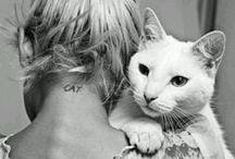 Meow / by Carol Melendez