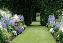 gardens / landscapes - mazes - flowers - pathways - gates - tips - techniques / by Terri Pakravan
