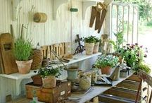 bench potting