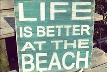 BEACH BUM / All things ocean sand, salt and sea