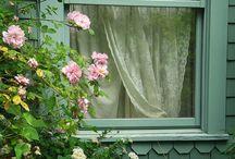 SHUTTERED GLASS / Doors, shutters and windows