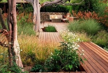Outdoor Ideas / by Brook Gray