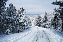 Winter / by carol emma