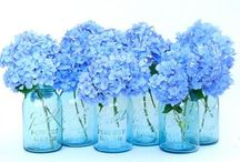 FLEURS / Flowers inside- plants, real blooms in vases, bouquets and fabrics- wallpaper,  art, etc