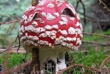 Fairy houses / by Haute Sisque
