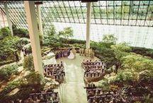 Westin -Southfield Southfield, MI - JD Entertainment Weddings