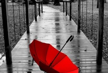 you hold the umbrella I'll hold you / by Edie Pelletier