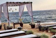 My Dream Wedding / by Shteffile Haus