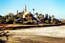 Hala Sultan Tekkesi, Słone Jezioro, Larnaka, Cypr/Salt Lake, Larnaca, Cyprus / Flamingi na słonym jeziorze w Larnace, Cypr/Flamingos on salt lake in Larnaca, Cyprus.