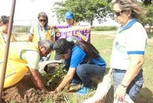 Lions Environmental Projects / by Lions Clubs