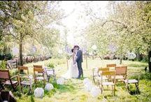 W e d d i n g | Decoration / Wedding decoration: Aisle, table settings, centerpieces, lightning, backdrops, arbor