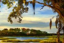 LowCountryScapes / Lovely places in South Carolina's Low Country / by Dawnscapes