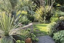 Garden Design / Garden Design more plants oriented. Go to mymy hard scape to see ideas more architectural and outdoor design oriented.   / by Holly Ferguson FFE OSE
