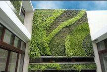 Jardines Verticales / Colección de jardines instalados en muros o fachadas de edificios.