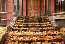 Autumn / by Heather Biehn