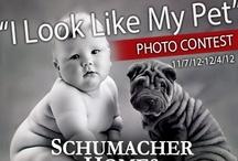 """I Look Like My Pet"" Photo Contest / Schumacher Homes, www.schumacherhomes.com, #SchumacherHomes #Pets #ContestIdeas / by Schumacher Homes"
