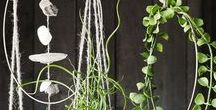 Products- Spring Decor and Inspiration. / Add a touch of Spring to your home with these stylish touches.