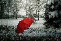 Umbrellas / by Toni Blankenship
