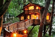 Treehouses / by Toni Blankenship