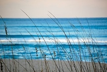 Tranquility / by Toni Blankenship