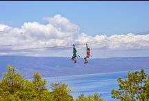 {group} Zip Lines of the World : The Best Zip Line Safaris + Canopy Tours / Zip Lines & Canopy Tours (also Zip Wire, Zipwire, Zipline, Zip-line, Flying Fox, Foefie Slide, Aerial Runway, Aerial Ropeslide or Tyrolean Crossing) http://en.wikipedia.org/wiki/Canopy_tour ► http://www.ziplinerider.com http://www.guardian.co.uk/travel/2013/jan/25/amazing-zip-wire-rides-around-world | To JOIN this GROUP BOARD : Comment on http://pinterest.com/pin/146578162844255721/ [copy & paste link] below | / by Tim Deyzel