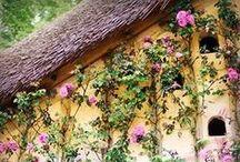 Cottage Flower Garden / I adore cottage flower gardens! / by Cheryl Bailey