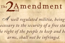 2nd Amendment Love / It's NOT about hunting people. It's about self defense, a basic and fundamental human right. It's about when predators comes a knockin and ALL OTHER OPTIONS FAIL, you put em' down. This is a no compromise 2nd amendment rights board, which means that I believe that whatever weapons/ammo that the military and police own, private citizens should be able to own as well.